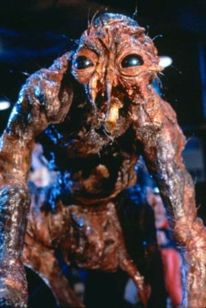 David Cronenberg's The Fly